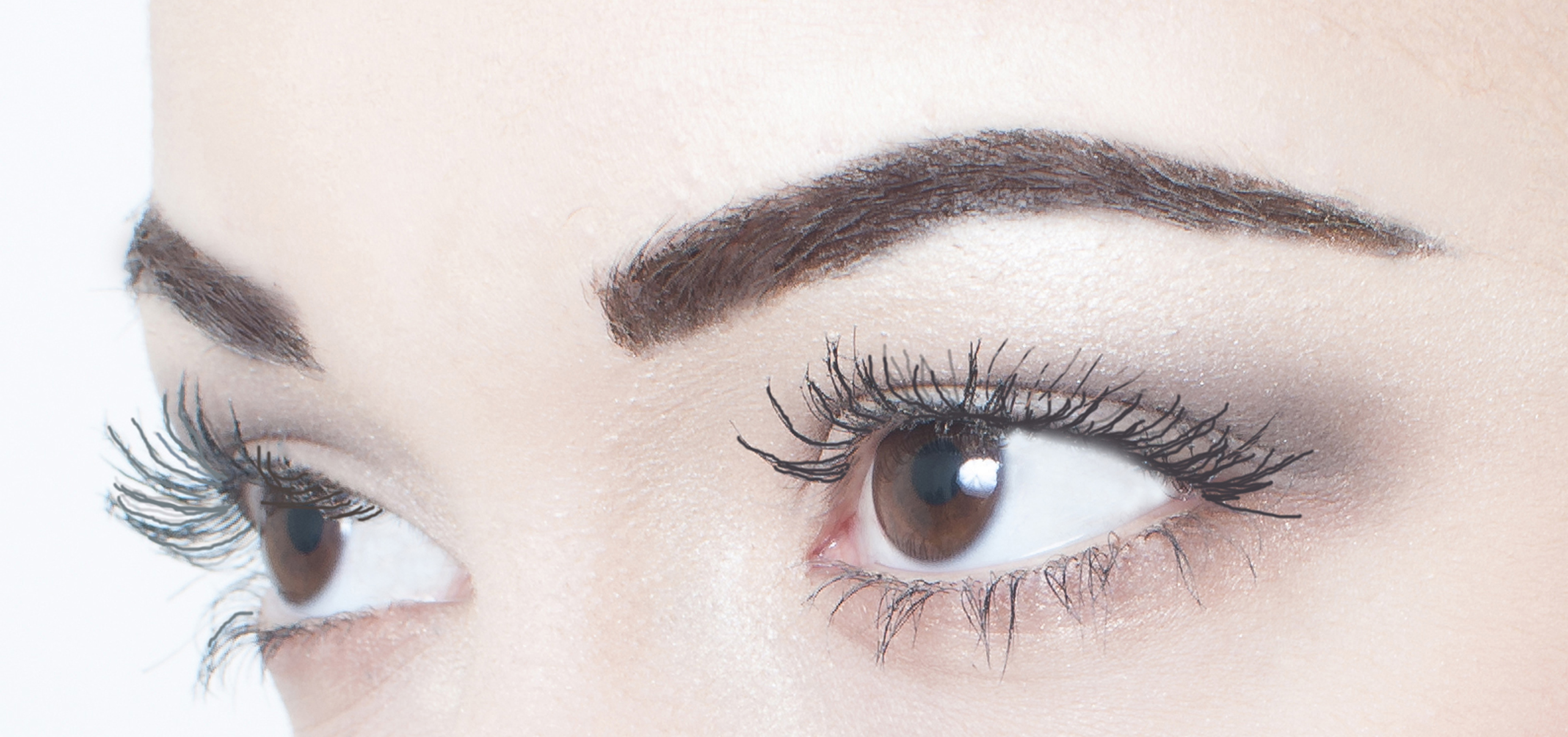 Eyebrow Courses giving a 3D effect using sculpting glaze and brow hairs