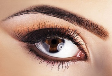 Defined Brow Courses